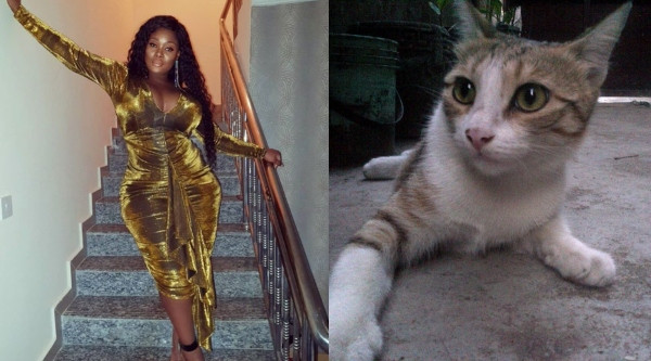 Toolz Shares Her Hilarious Experience With A Sick Stray Cat