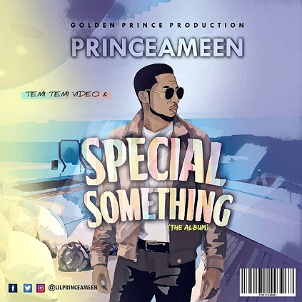 Prince Ameen - Special Something (Album)